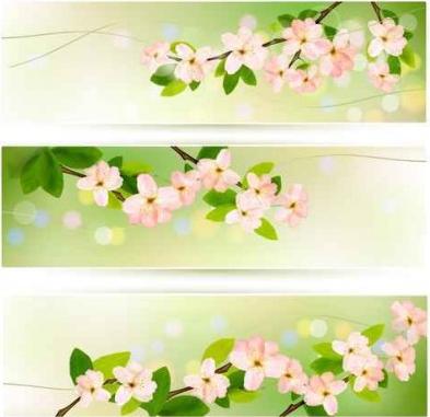 flower green banner background vectors