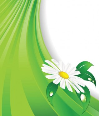 flowers background 01 vector graphics