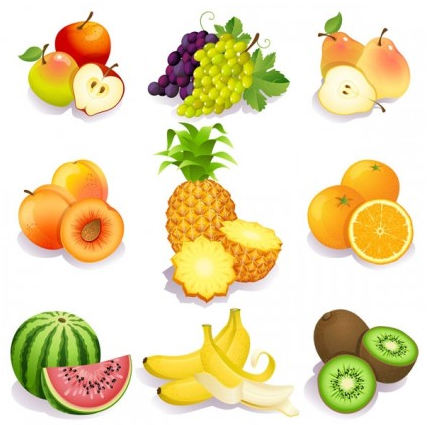 fresh fruits vector set