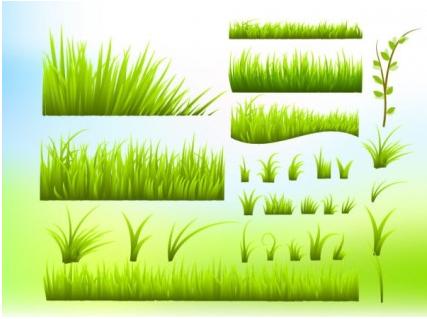 green grass vectors