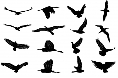silhouettes collection Free design vectors