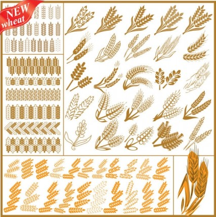 wheat pattern vector