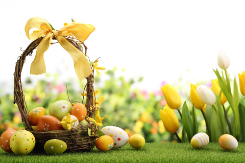 Basket of easter eggs on meadow Stock Photo 02