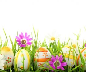 Basket of easter eggs on meadow Stock Photo 04