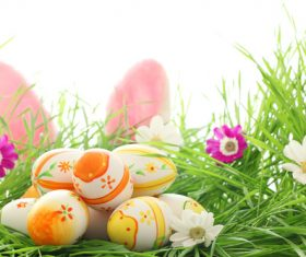 Basket of easter eggs on meadow Stock Photo 06