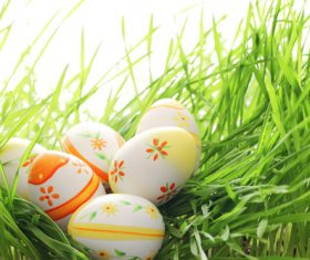 Basket of easter eggs on meadow Stock Photo 09