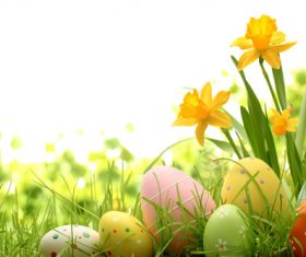 Basket of easter eggs on meadow Stock Photo 10