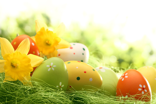 Basket of easter eggs on meadow Stock Photo 11