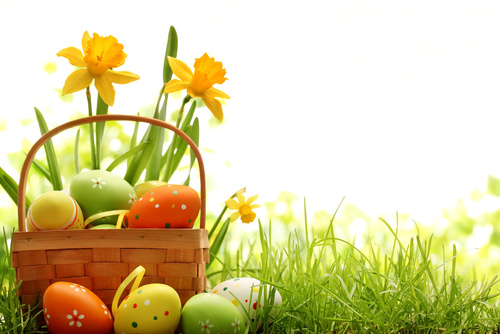 Basket of easter eggs on meadow Stock Photo 12