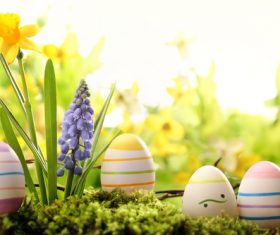 Basket of easter eggs on meadow Stock Photo 13