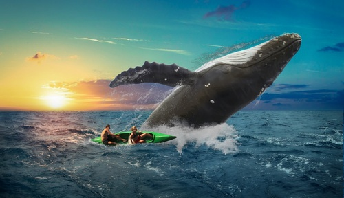 Big whale jumping out of the sea Stock Photo