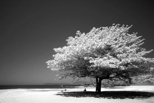 Black and white landscape photography Stock Photo 04