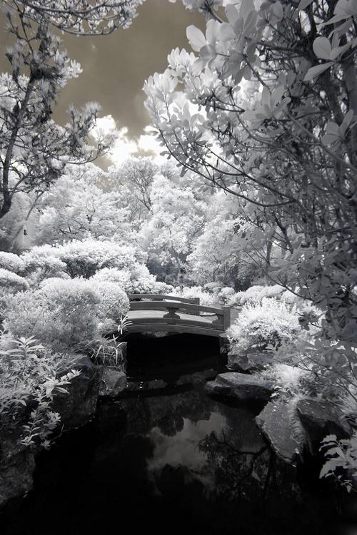 Black and white landscape photography Stock Photo 07