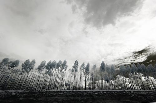 Black and white landscape photography Stock Photo 10