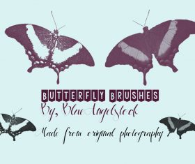 Butterfly HD Photoshop Brushes