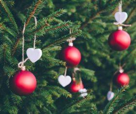 Christmas tree decoration Stock Photo 08
