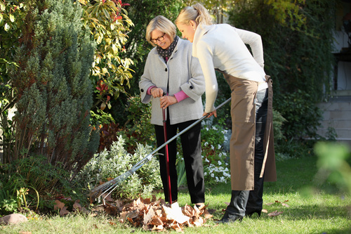 Clean up the leaves with the mother Stock Photo