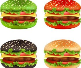 Colored hamburger illustration vectors