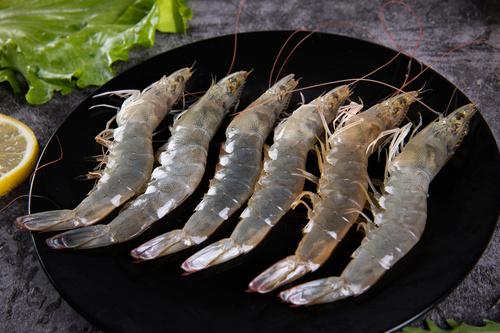 Delicious fresh base shrimp Stock Photo 01