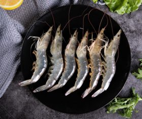 Delicious fresh base shrimp Stock Photo 02