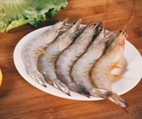 Delicious fresh base shrimp Stock Photo 06