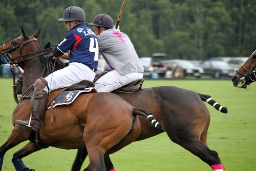 Fierce polo match Stock Photo 01
