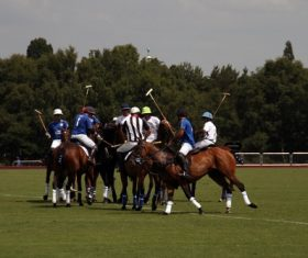 Fierce polo match Stock Photo 04