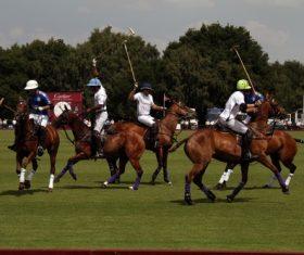 Fierce polo match Stock Photo 05