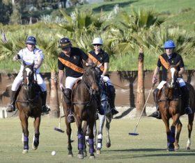 Fierce polo match Stock Photo 06