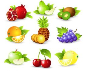 Fruits set of vector illustrations 01