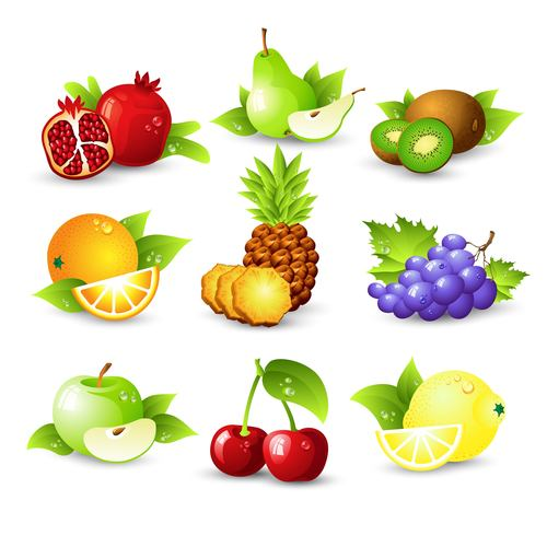 Fruits set of vector illustrations 01