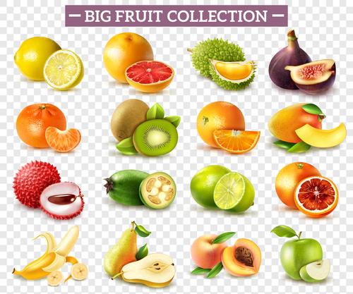 Fruits set of vector illustrations 02