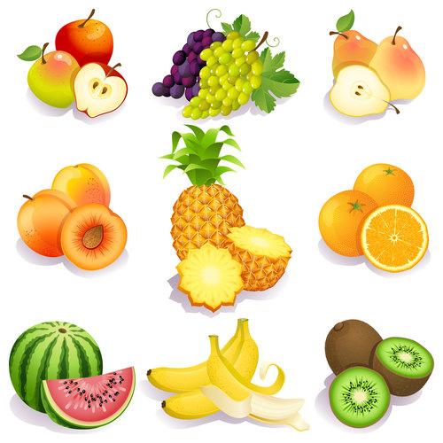 Fruits set of vector illustrations 03