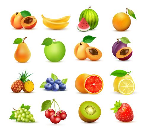 Fruits set of vector illustrations 04