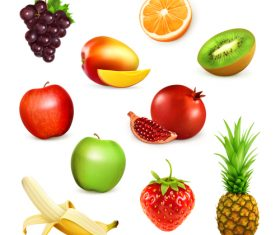 Fruits set of vector illustrations 05