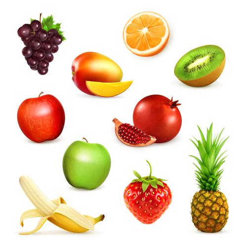 Fruits set of vector illustrations 05