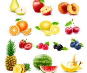 Fruits set of vector illustrations 07