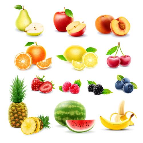 Fruits set of vector illustrations 07