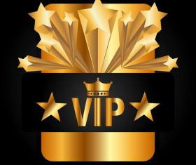 Golden VIP labels luxury design vector 05