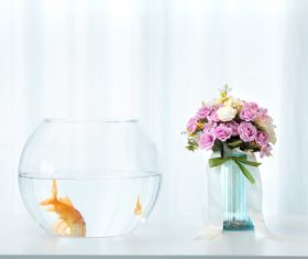 Goldfish in a fish tank Stock Photo 04