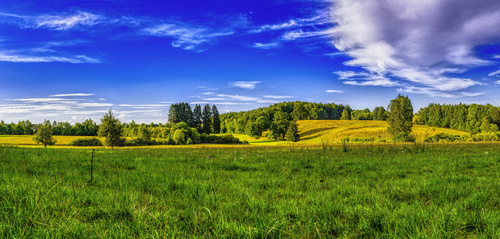 Green natural scenery Stock Photo 05