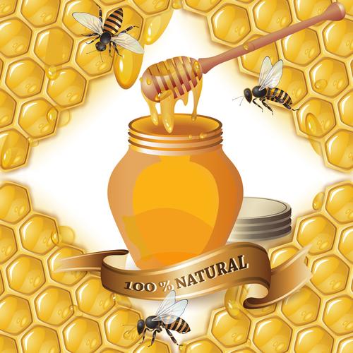 Honey bee creative poster vectors 01