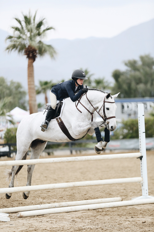 Horseback riding woman at the racecourse Stock Photo 03