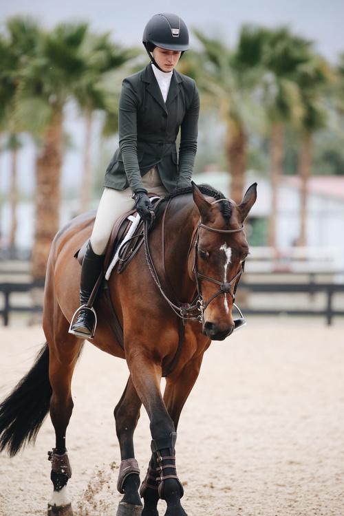 Horseback riding woman at the racecourse Stock Photo 04