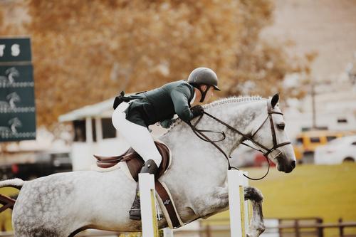 Horseback riding woman at the racecourse Stock Photo 07
