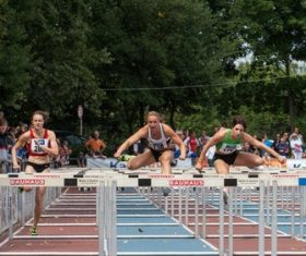 Hurdle race Stock Photo 01