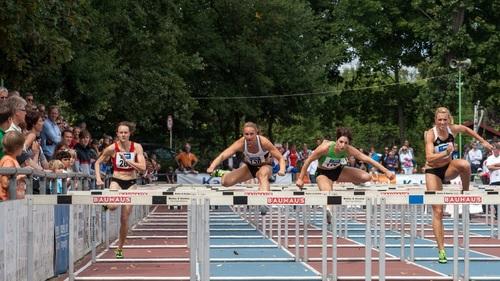 Hurdle race Stock Photo 01