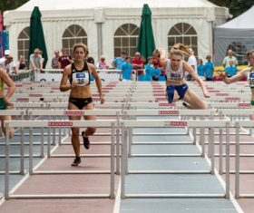Hurdle race Stock Photo 05