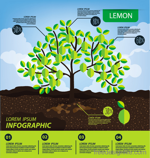 Lemon infographic template vector material