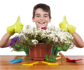 Little boy planting flowers Stock Photo